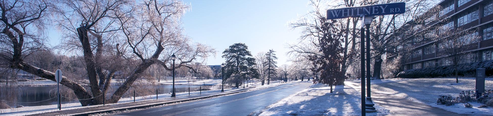 snowy uconn road